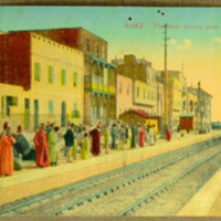 Suey - The train arriving from The Port - Tewfik